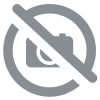Aerosol de VROOAM CLEAR TACK CHAIN LUBE pour kart karting